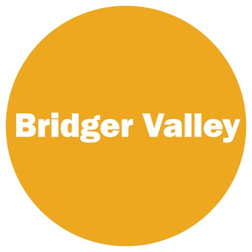 Bridger Valley Yellow